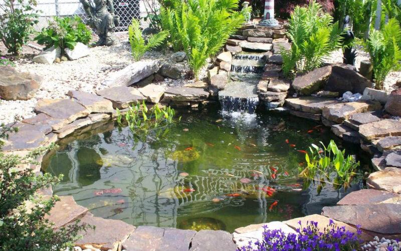 Süs Havuzu Aydınlatma Sistemleri Aydınlatma sistemleri ve Benzer ürünleri ÜRÜNLERİMİZ sayfasından detaylı bir şekilde inceleyebilirsiniz. Devamı... Dekoratif Bahçe Havuzları